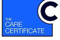 Online care certificate training courses -