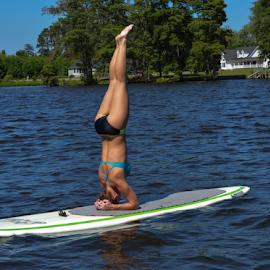 Paddleboard Yoga by Andi Zero - Sports & Fitness Other Sports ( fitness, paddleboard, yoga )