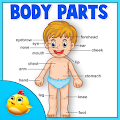 Game Learning Human Body Part 1 APK for Kindle
