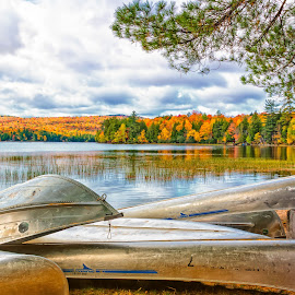 Calm Waters by Kim Cochrane - Transportation Boats ( clouds, red, green, fall foliage, trees, reflections, yellow, canoes )