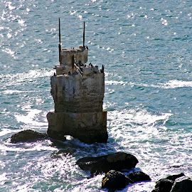 Abandoned Lighthouse Cape of Good Hope by Ingrid Anderson-Riley - Buildings & Architecture Decaying & Abandoned