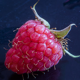 Raspberry. by Simon Page - Food & Drink Fruits & Vegetables