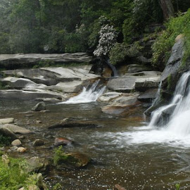 All three Falls by Jo Anne Keasler - Novices Only Landscapes