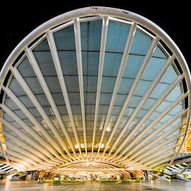 Lisbon Oriente Train Station by Marcin Frąckiewicz - Buildings & Architecture Public & Historical ( lisbon oriente train station )