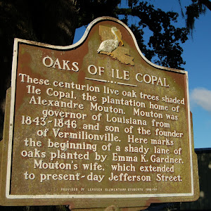 These centurion live oak trees shaded Ile Copal, the plantation home of Alexandre Mouton. Mouton was governor of Louisiana from 1843-46 and son of the founder of Vermilionville. Here marks the ...