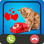 Download Full Calling From Cat Talking 1.0 APK