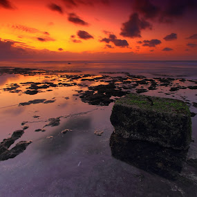 Alone by Pande Putu Krisna Wedana - Landscapes Sunsets & Sunrises