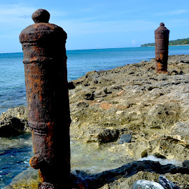 by Liz Rosas - Artistic Objects Antiques ( coral, vacation, st. croix, ocean, canons, beach, caribbean, virgin islands )