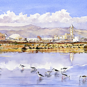 Las Salinas de Cabo de Gata by Margaret Merry - Painting All Painting ( watercolor, art, andalucia, salt flats, watercolour, painting, birds, spain )