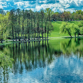 Trees and shadows by Radu Eftimie - City,  Street & Park  City Parks ( bucharest, park of youth, trees, lake, romania, shadows )