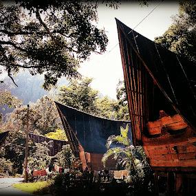 Bataknese House's by Daniel Pasaribu - Buildings & Architecture Homes ( batak, toba )