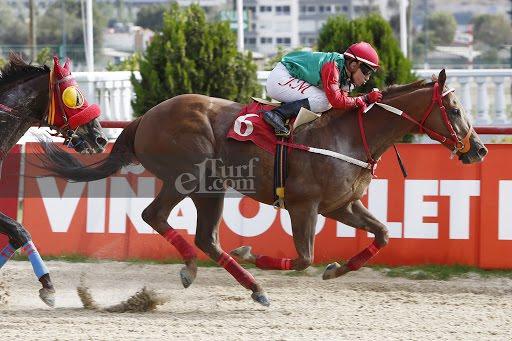 El Roque (Rock of Gibraltar) gana el Clásico Sindicato De Cuidadores VSC (1200m-Arena-VSC).