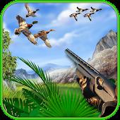 Entenjagd: Wasservögel Jäger