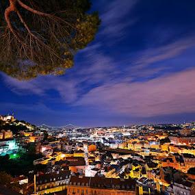 viewpoin of Graça (Lisboa) by Rui Catarino - City,  Street & Park  Vistas ( cidade, luz, miradouro, historico, portugal, historia, lisboa, nocturno, graça )