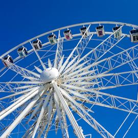 Ferris Wheel by Carmen Bouwer - City,  Street & Park  Amusement Parks ( structure, amusement park, blue, white, buildings, architecture, entertainment, ferris wheel,  )