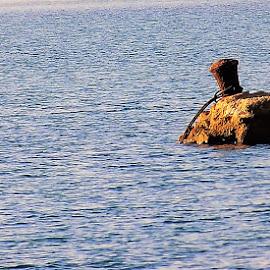 along the coast of the sea by Marija Čaušić - Landscapes Beaches ( blue, stone, sea, brown )
