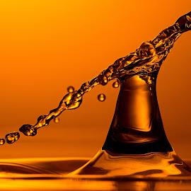 Splash tower by Miklós Szeles - Abstract Water Drops & Splashes ( water, liquid sculpture, flash, highspeed, waterdrop, splash, splash photography, drop, liquid art, waterdrops, water drop, droplets, macro, liquid, droplet, drops )