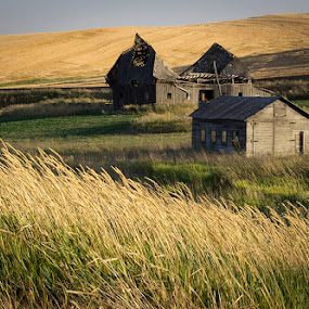 by Melissa S. Hunt - Landscapes Prairies, Meadows & Fields ( hills, nature, barns, fields )
