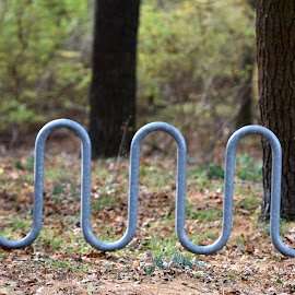 Bike Rack by Lorraine D.  Heaney - Artistic Objects Other Objects