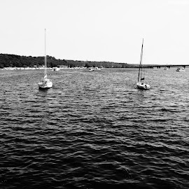Setting Sail by Tyler Norkunas - Black & White Landscapes ( water, black and white, high contrast, sailboat, river )