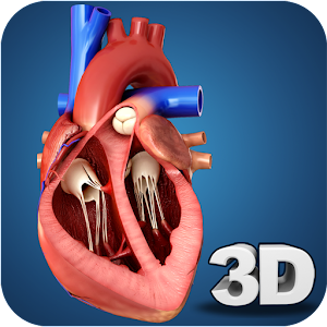 Heart Anatomy Pro. For PC