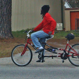 Double Seater by Terry Linton - Transportation Bicycles