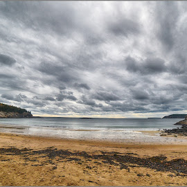 Sandy Beach  by Lorraine D.  Heaney - Landscapes Waterscapes