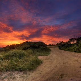 Massasoit Bridge Road by Robert Burger - Landscapes Sunsets & Sunrises