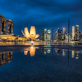 by Gordon Koh - City,  Street & Park  Skylines