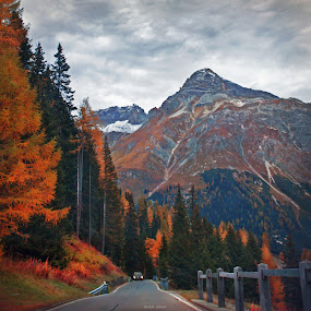 descent from the mountains by Lilian Iatco - Landscapes Mountains & Hills ( car, mountains, autumn, travel, road )