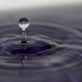 Purple Haze by Robert George - Abstract Water Drops & Splashes