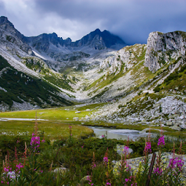 Beautiful Wilderness by Travis Pambu - Landscapes Mountains & Hills ( val d'amola, italy, alps )