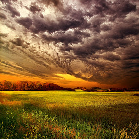 Soulful by Phil Koch - Landscapes Prairies, Meadows & Fields ( , hdr )