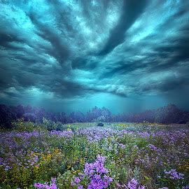 When You Can Only Feel The Rain by Phil Koch - Landscapes Weather ( trending, country, shadow, rural, office, scenic, hope, canon, beautiful, weather, season, sky, emotions, journey, natural, inspired, heaven, uni  ty, field, dawn, photography, love, mood, vertical, clouds, fineart, life, colors, joy, lines, popular, arts, meadow, wisconsin, art, living, nature, mo  rning, inspirational, dramatic, portrait, horizons, horizon, environment, outdoors, sunset, earth, travel, serene, landscape )