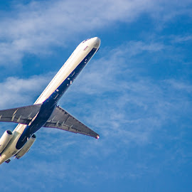 Way up in the sky by Allyah Lombardo - Transportation Airplanes ( flying, blue sky, blue, airplane, take off )