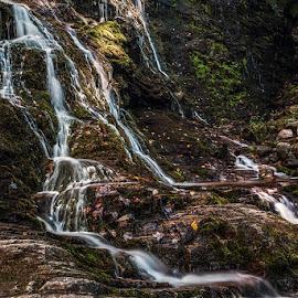 MINGO by Jeremy Yoho - Nature Up Close Water ( water, stream, cascade, waterfall, river )