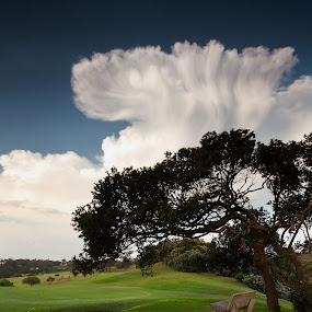 Mushroom by Bruce Meaker - Landscapes Cloud Formations