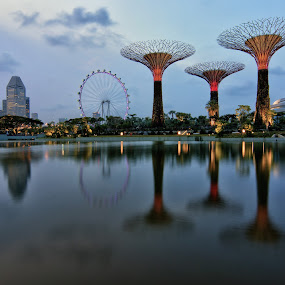 Dragonfly Lake @ GBTB (Singapore) by Riki Boo - Landscapes Waterscapes