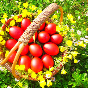 Easter eggs by Givi Datunashvili - Public Holidays Easter ( easter eggs )