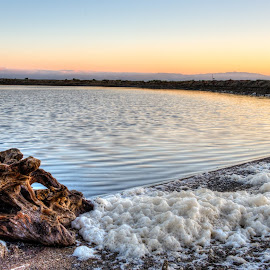 Alviso Marina by Jayasimha Nuggehalli - Landscapes Travel