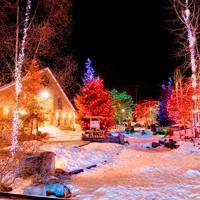 Christmas Scenery At Whistler by Ryan Li - Public Holidays Christmas ( whistler, canada, christmas, travel, house, lights, north america, tree, snow, christmas tree, night, scenery, light )