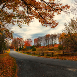 past peak by Bob Ricketson - Landscapes Prairies, Meadows & Fields ( catskills, color, fall, hudson valley, leaves, country road )