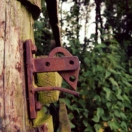 Un-Latched ! by Andrew Sledmore - Artistic Objects Other Objects ( old, post, wooden, park, gate )