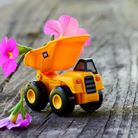 by Dipali S - Artistic Objects Toys ( flora, transport, artistic, toys, pink, flower )