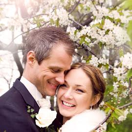 Apple blossom by Emily Evans - Wedding Bride & Groom ( love, sweden, tree, nature, happy, apple, wedding, appleblossom, glow, flowers, bride, groom )