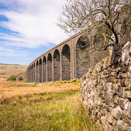 Ribblehead and Drystone Wall by Darrell Evans - Buildings & Architecture Bridges & Suspended Structures ( north yorkshire, sky, viaduct, yorkshire, countryside, old, settle-carlisle railway, clouds, transport, building, stone, outdoor, yorkshire dales, uk, ribblehead, hills, moors, railway, blea moor, batty moss )