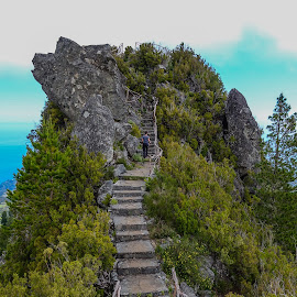 Viewpoint in Madeira by Palmi Vilhjalmsson - Landscapes Travel ( madeira travel, porgugal, maderia )