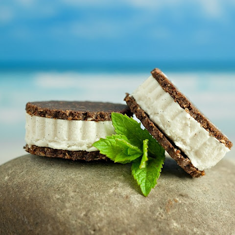 Vegan Ice Cream Sandwiches (Dairy & Gluten-Free)