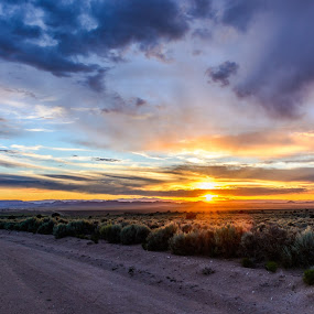 by Jeremy Elliott - Landscapes Sunsets & Sunrises (  )