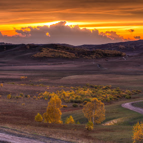 The way home by Anthony Lau - Landscapes Prairies, Meadows & Fields ( inner mongolia, hdr, prairies, meadows, road, highland, sky, sunset, trees, cloud, paths to nature, plain, china, pwcpaths, garyfonglandscapes, holiday photo contest, photocontest,  )